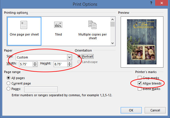 Publisher Bleed Settings