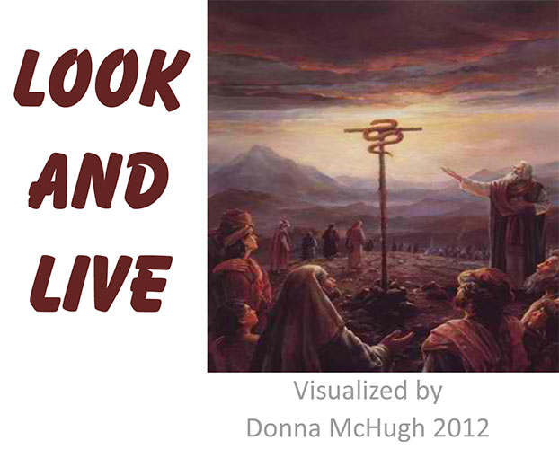Look and Live Visualized by Donna McHugh